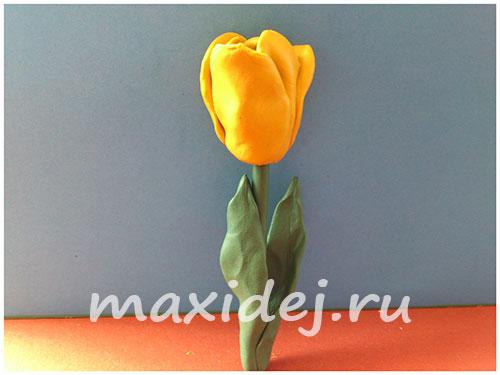 как сделать из пластилина цветок